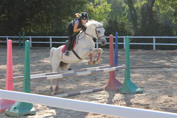 Stage d'équitation, cours d'obstacles