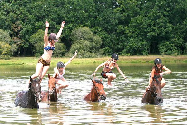 stage d'équitation, la baignade dans le lac du Bourdon
