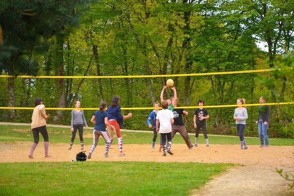 stage d'équitation, terrain de basket et volley