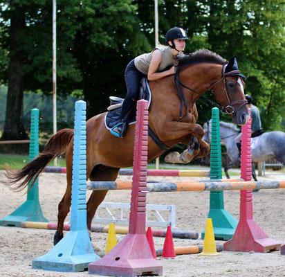 stage d'équitation, entrainement CSO