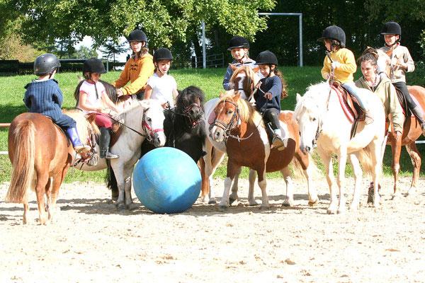 stage d'équitation, initiation et jeux à poney