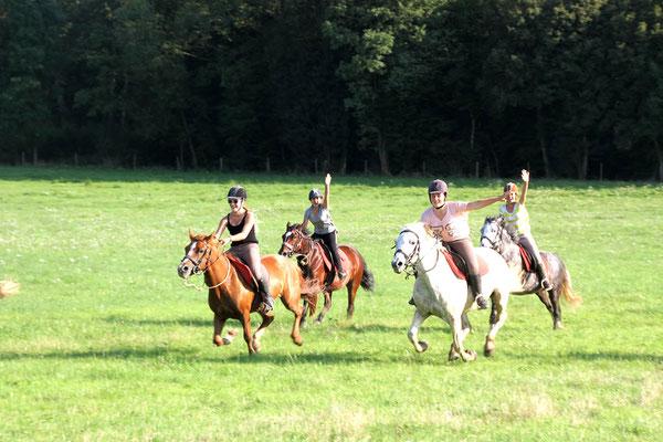 stage d'équitation aux Grilles, la charge