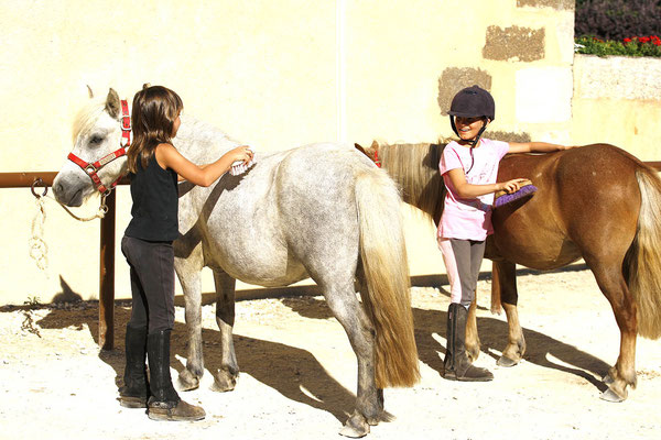 stage d'équitation, pansage des poneys
