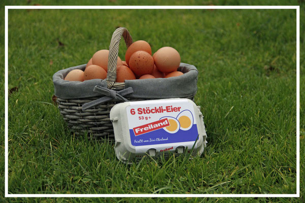 Stöckli-Eier Freiland