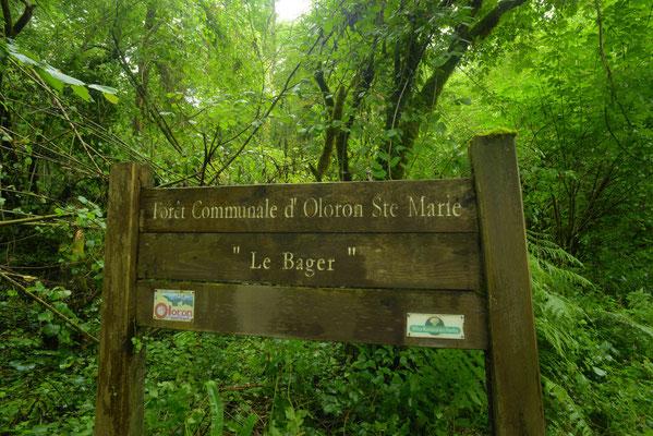 Panneau indiquant la Forêt communale d'Oloron au Bager qui recelle nombre de trésors cachés dont les aqueducs Napoléon III