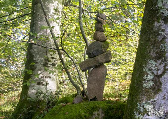Vieux arbres et Totem roches volcaniques
