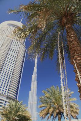 Przy Dubai Mall