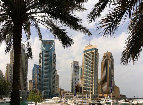 W cieniu pod palmami - Dubai Marina