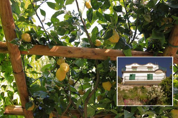 Tu mieszkalismy - nasz domek w Conca dei Marini