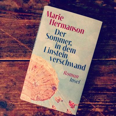 Kurz-Rezension Marie Hermanson Der Sommer, in dem Einstein verschwand