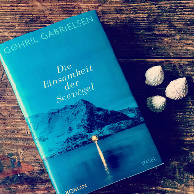 Rezension Gøhril Gabrielsen Die Einsamkeit der Seevögel