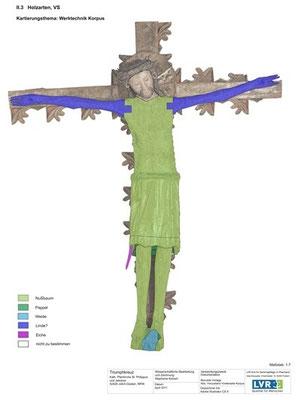 Kartierung Holzarten