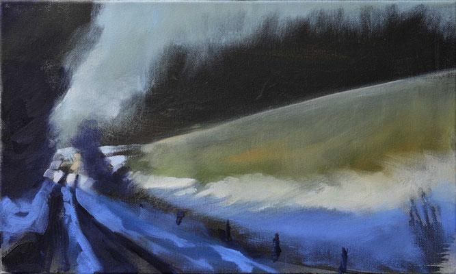 Winterweg, 2017, Öl auf Leinwand, 30 x 50  (saled)