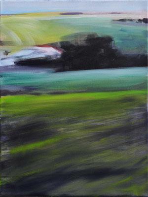 Maifeld Senke, 2017, Öl auf Leinwand, 40 x 30   (saled)