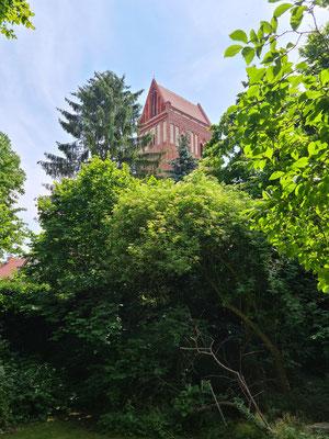 Blick auf den Kirchturm vom Pfarrgarten