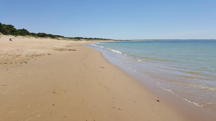 La grande plage près de la maison