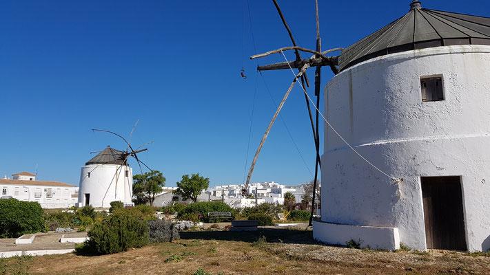 Windmühlen in Vejer