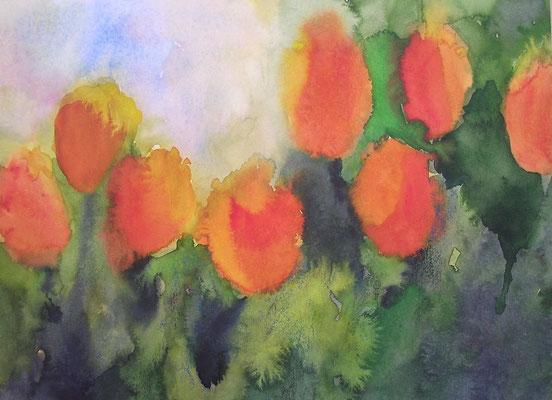 orange tulpen, 30x40 cm