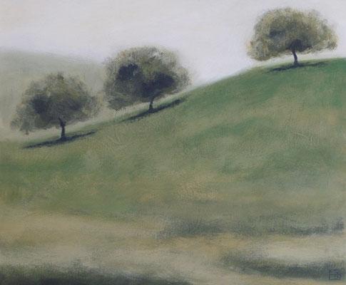 apfelbäume 2014, 50x60 cm