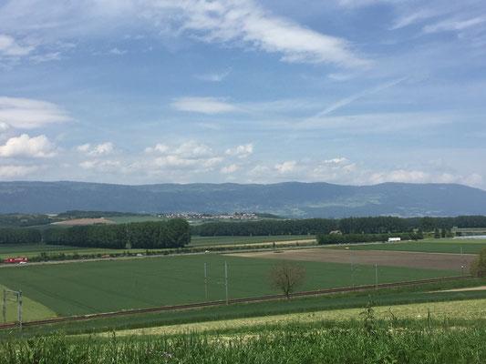 Blick in Richtung Jura (Chamblon)