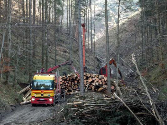 """Holzabtransport im """"Daumgraben"""" Talstation der Holzseilbahn"""