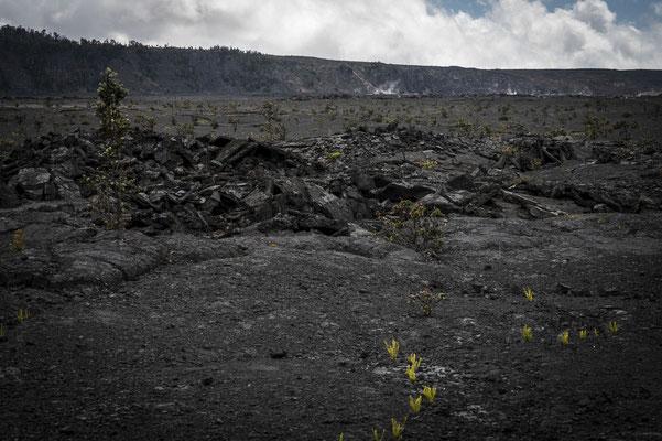 Am Krater vom Kīlauea Vulkan