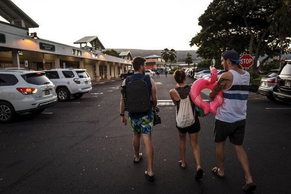 Der erste große Auftritt von Ingo der Flamingo, dem eigentlichen Star auf Hawaii.