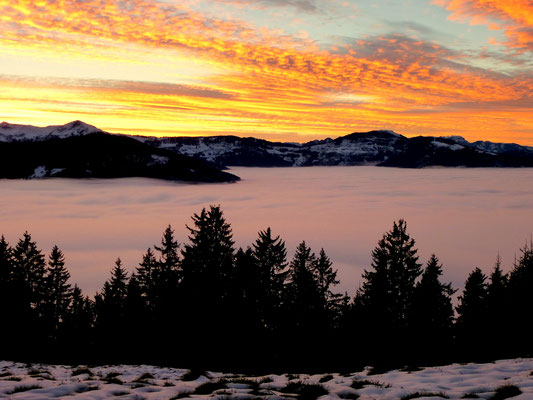 Alpenrosenhütte, Tirol