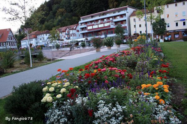 Hotel à Bad-Herrennalb
