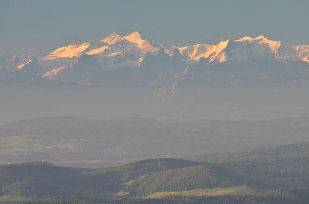 Von den Gipfeln des Schwarzwaldes blicken wir zu den Schweizer Alpen