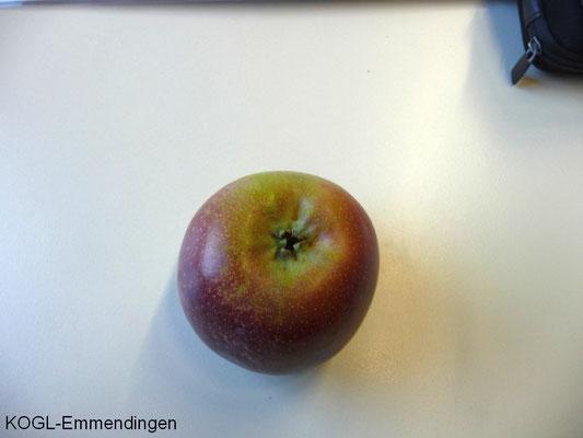 Brauner Matapfel