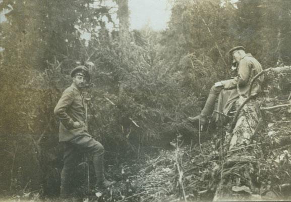 Getarnte Beobachtungsstelle in den Karpathenwäldern
