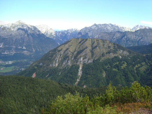 Blick auf den Südhang des Javoršček vom Gipfel des Krasji vrh