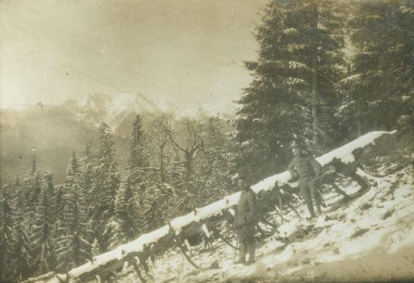 In den Karpathenwäldern