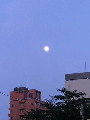 yororon/2020.06.04 19:05/東京都豊島区
