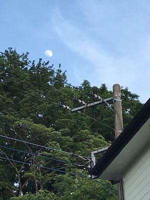 渡邉小夏/2020.06.02 17:00/神奈川県川崎市麻生区、自宅近く