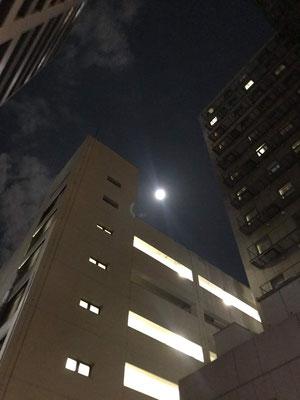 稲吉 稔/2020.10.02/横浜市中区