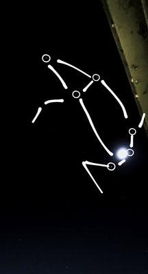 ダイそん/2020.05.29 20:30/山形県、ベランダ