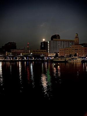 渡辺 篤/2020.08.04 04:00/横浜市中区、象の鼻桟橋