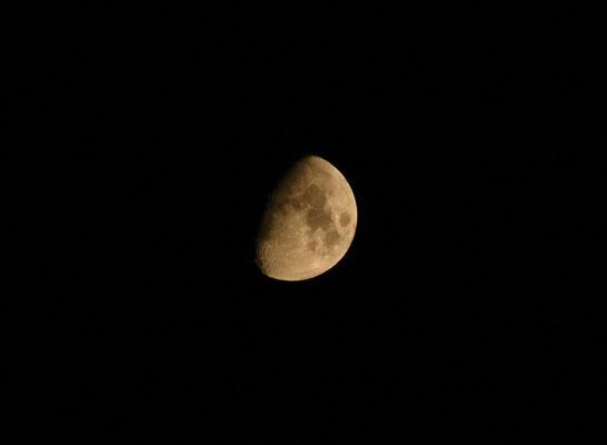 marmotte/2020.08.27 23:30/フランス、グルノーブル、自宅の窓から