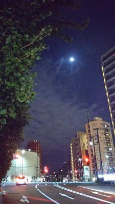りえ&ゆうき/2020.10.06 23:16/東京、不忍通り