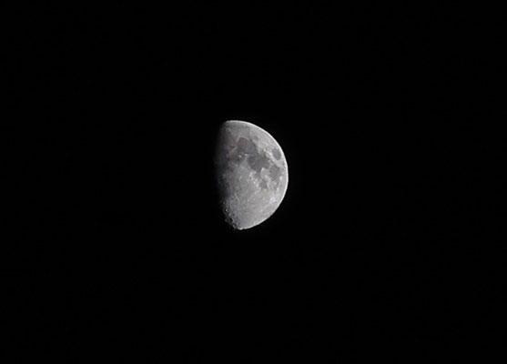 marmotte/2020.06.29 22 :39/フランス、グルノーブル、自宅窓から/月齢 9.04