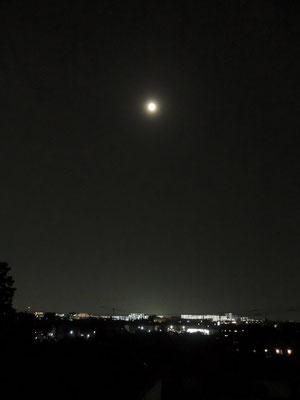 みひろ/2020.06.03 21:00頃/東京多摩地区、自宅ベランダ