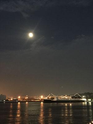 渡辺 篤/2020.06.04 19:57/横浜市中区、大さん橋