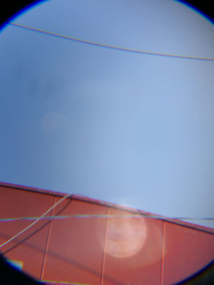 SGK/2020.06.10 07:28/多摩川