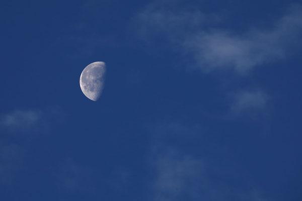 たかはしじゅんいち/2020.06.12 05:12/東京都日野市、自宅窓から