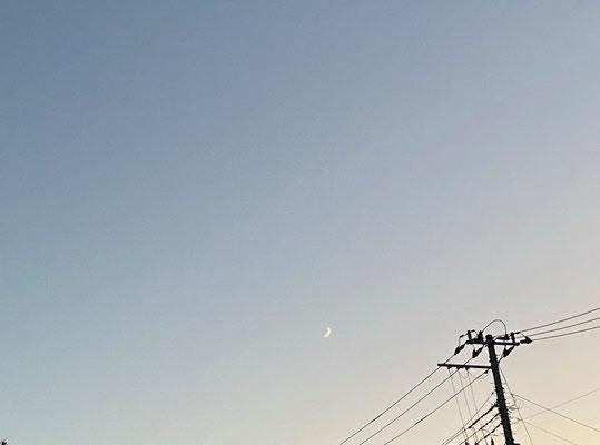 ふうちゃん/2020.10.20 17:45/東京都内
