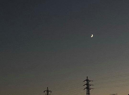 ふうちゃん/2020.10.20 17:27/東京都内