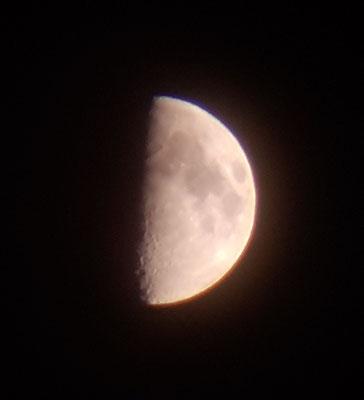 marmotte/2020.06.28 22:12/フランス、ビヴィエ、近くの山/月齢 7.46
