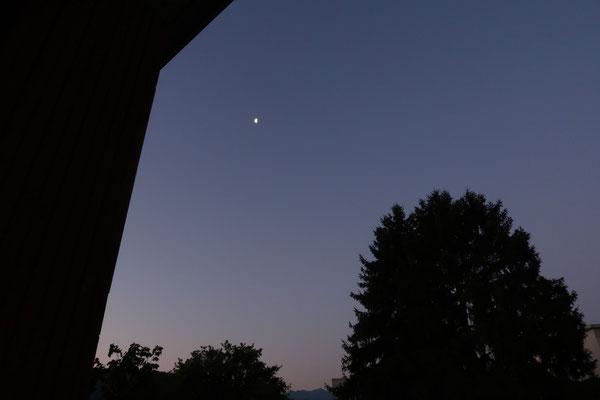 marmotte/2020.07.12 05:48/フランス、グルノーブル、自宅の窓から